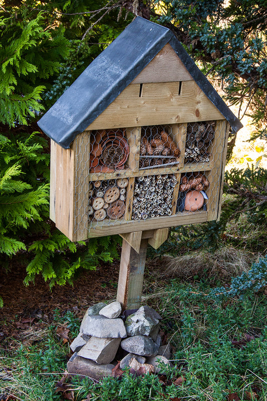 Bug Boxes to encourage natural insect predators at the Flower Farm in Dumfries & Galloway Copyright Ken Leslie Photography