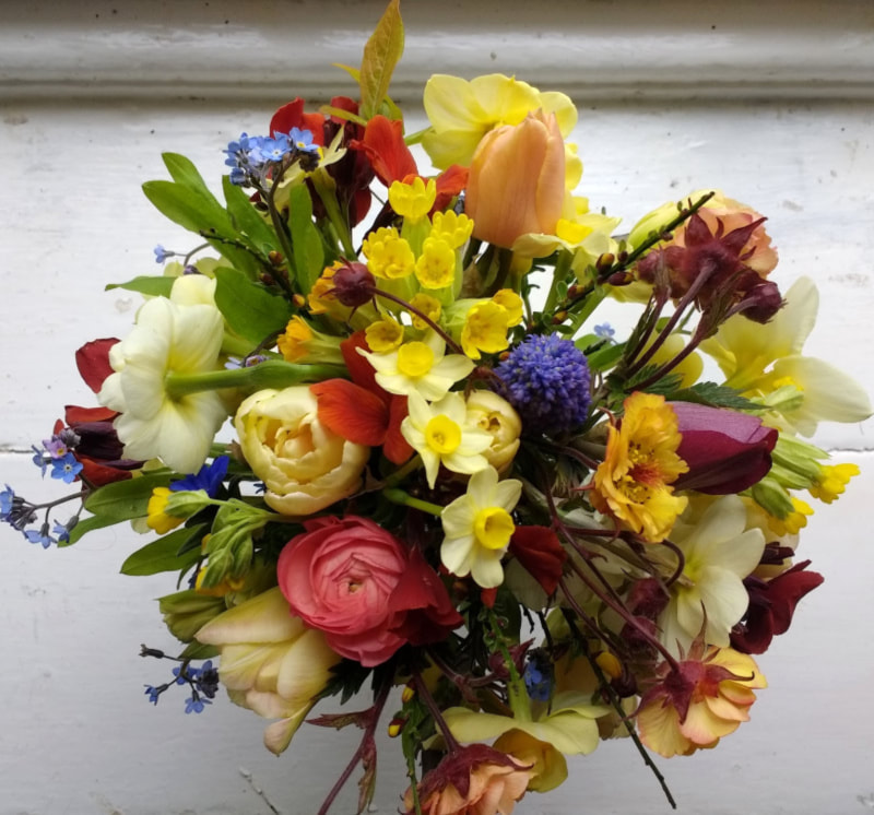 Yellow Posy of locally grown Spring flowers copyright GallowayFlowers.co.uk